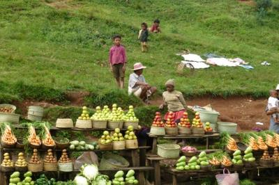 79 antsirabe en direction d andasibe vente legumes fruits