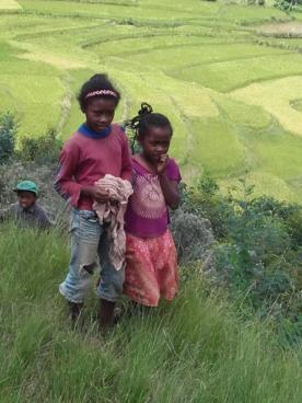 Malgaches dans la campagne 1