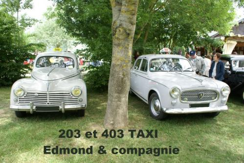 Taxis203 403